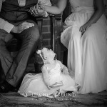 The Definition of Gorgeous, Bangalow Wedding Photography